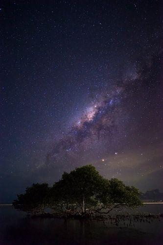 Window to Space - Melkweg