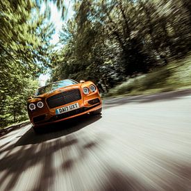 Bentley im voller Fahrt von Sytse Dijkstra