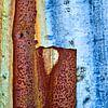 Oergrond - Studie bruin en blauw van Hans Kwaspen thumbnail