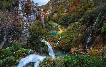 Uit de monding van de rivier van Joris Pannemans - Loris Photography