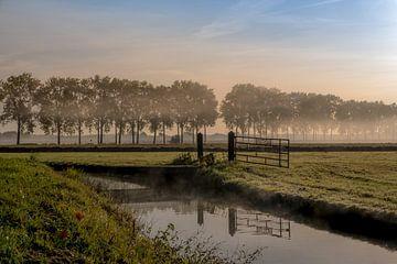 Hek met titel AVONTUUR von Moetwil en van Dijk - Fotografie