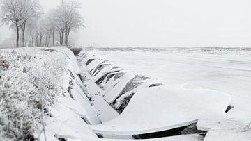 Winterlandschaft mit Eis von Dick Doorduin