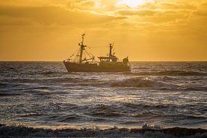 Ship ahoy von Richard Steenvoorden