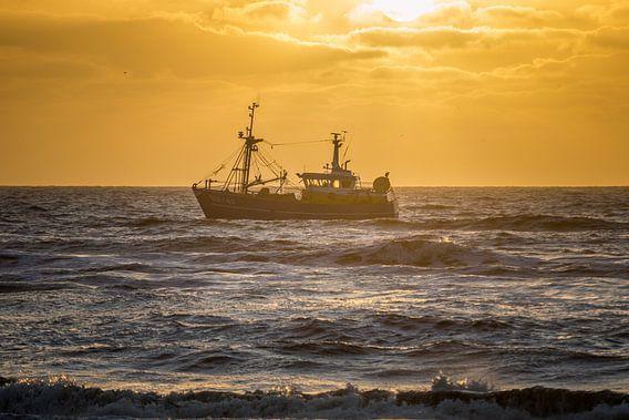 Schip ahoy van Richard Steenvoorden
