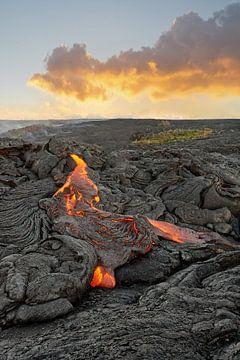 Vulkanisch gebied met roodgloeiende lavastroom op Hawaii van Ralf Lehmann