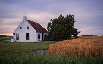 Huisje in het korenveld van Marga Vroom
