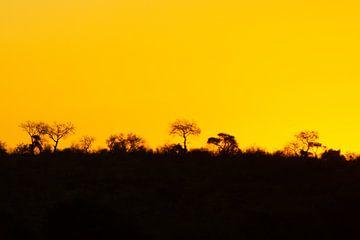 Zuid afrika bij zonsondergang van Glenn Vlekke