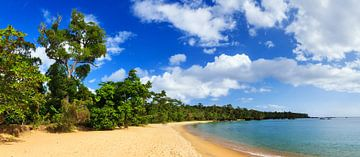 Tropisch paradijs panorama van Dennis van de Water