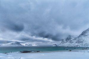 Sneeuwstorm in Aantocht von Niels den Otter