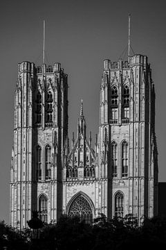 Kathedraal in Brussel van E.M Hak