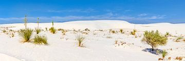 WHITE SANDS  Idyllisch panorama van Melanie Viola