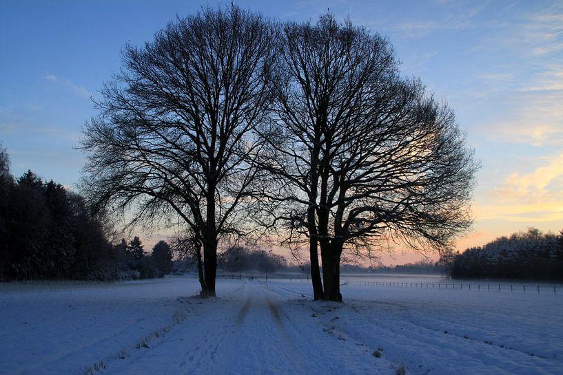 Winter sur Marcel van Rijn