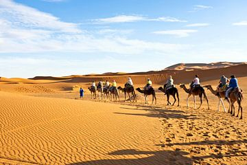 Kamelen karavaan door de zandduinen van de Sahara desert von