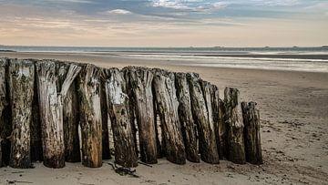 Nordsee Strand von Jens Sessler