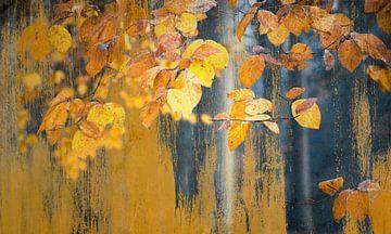 Kunst mit malerischen gelben Blättern von Rob Visser