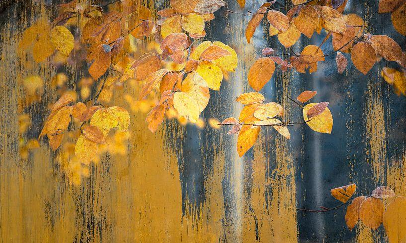 Kunst met schilderachtige gele blaadjes van Rob Visser