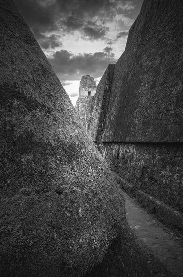 Ruines Tikal - Guatemala van Joris Pannemans - Loris Photography