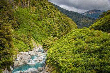 Gates of Haast, Mount Aspiring NP, Nieuw Zeeland van Rietje Bulthuis