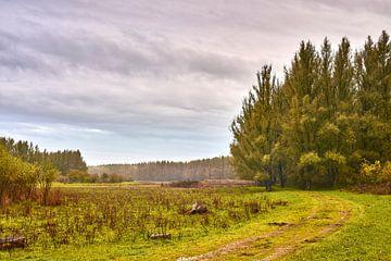 Klassiek ruig herfst landschap van Jenco van Zalk