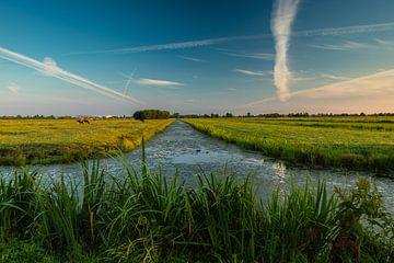 Polderlandschap van René Groenendijk
