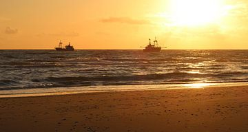 Fischerboote von BVpix