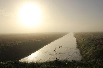 Texel Landschap 055 von Starworks Lien van der Star