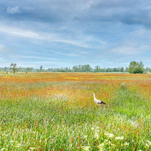 Ooievaar in een schilderachtig landschap van Van Gogh