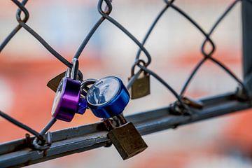 Lovelocks In Love sur Urban Photo Lab