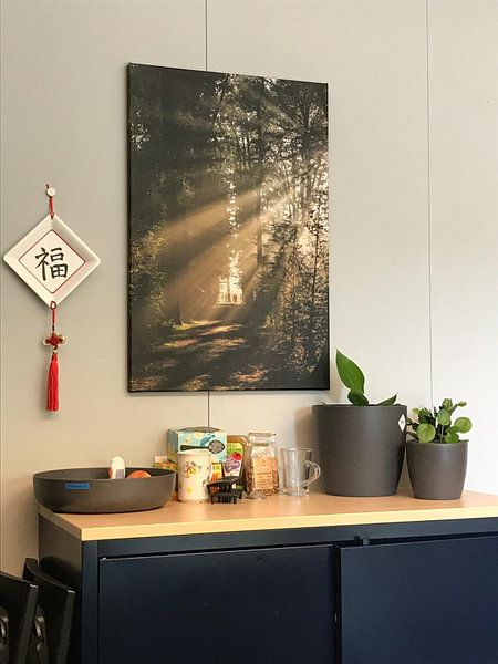 Klantfoto: Zonnegroet! Zonnestralen schijnen door het bos van Amelisweerd! van Arthur Puls Photography