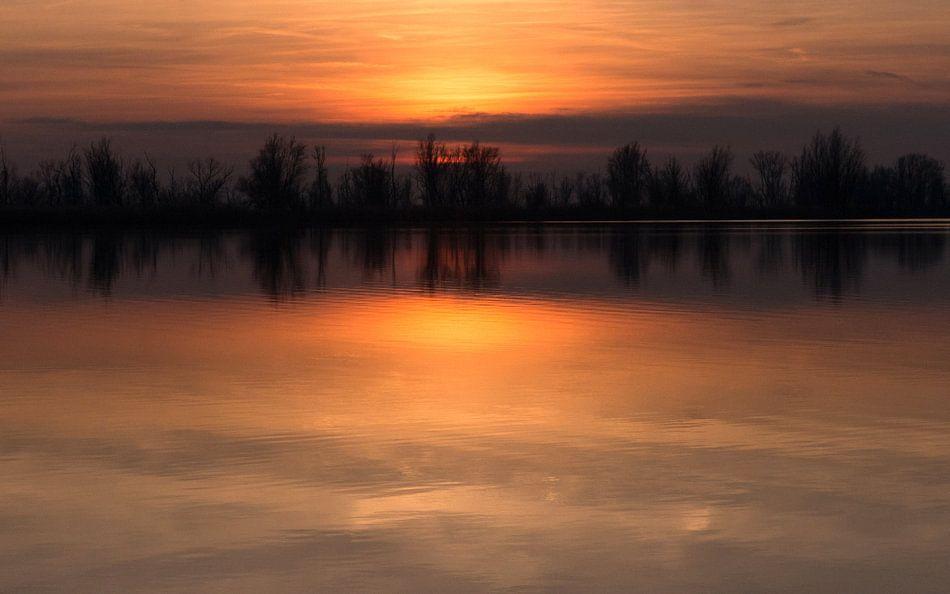 Gouden zonsondergang Oostvaardersplassen