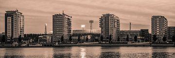 Feyenoord stadion 33 (Sepia) van