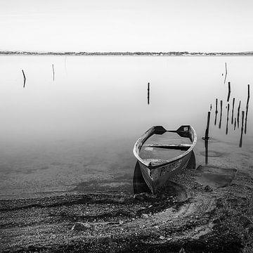 La barque inondée sur Catherine Fortin
