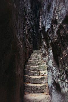 Der Steinweg von Dick Carlier