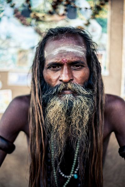 India van Bart van Eijden