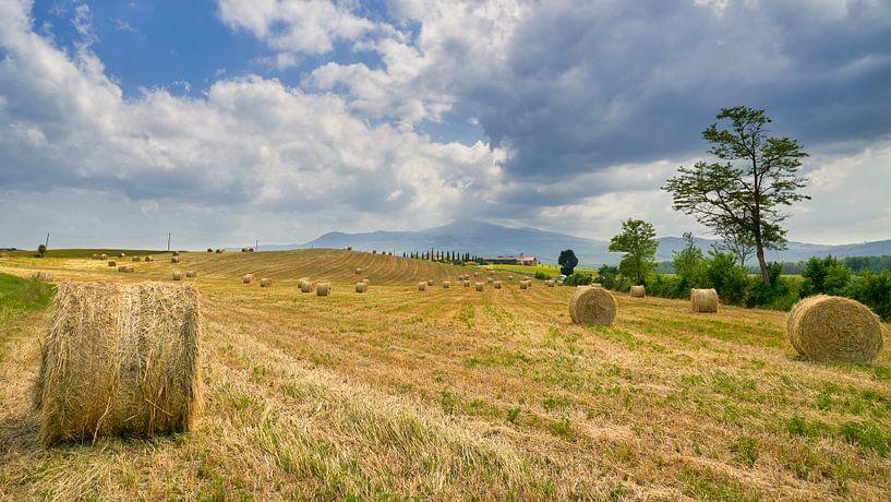 landschap in Toscane van eric van der eijk