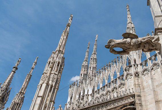 Dom van Milaan, detail hemelwaterafvoer