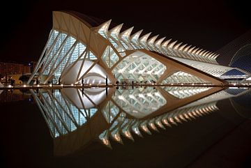 Prince Felipe Science Museum, Valencia, Spanje, architect Santiago Calatrava