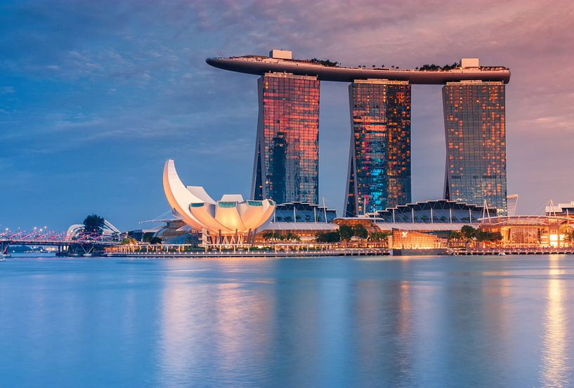 Skyline Singapore at night van Ilya Korzelius