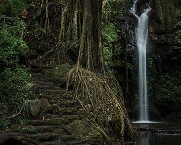 De Putri Palutungan waterval in West Java van Anges van der Logt