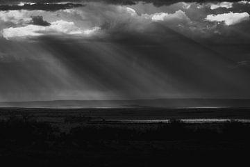 Landschaft Masai Mara mit schönen Sonnenstrahlen von Dave Oudshoorn