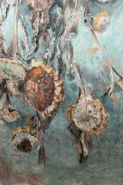 Getrocknete Sonnenblumen