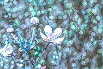 Abstracte bloemen in het veld