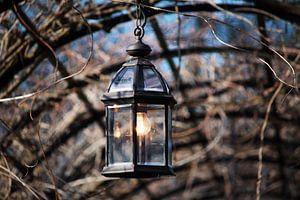 Lantaarn licht van Ilse Rood