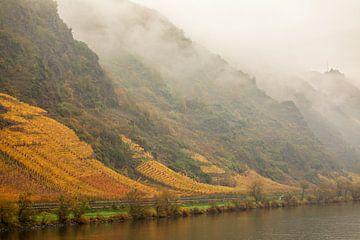 Wijnvelden aan de oever van de moezel in Cochem van gea strucks