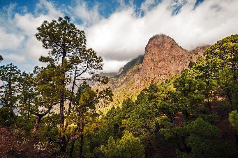 La Palma – Caldera de Taburiente van Alexander Voss