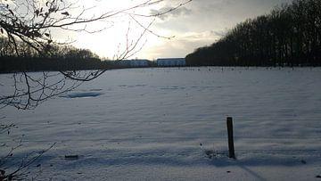 Sneeuwlandschap bij kasteel de Vanenburg von Wilbert Van Veldhuizen