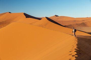 Sanddünen in der Namib-Wüste von OCEANVOLTA