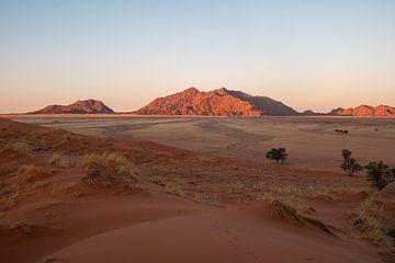 Wüste in Namibia von Joelle Molenaar