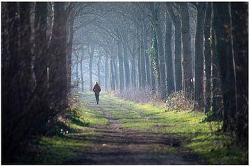 Op wandel van Pat Desmet