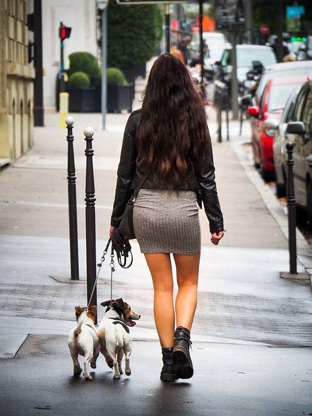 Walking in Paris van Rijk van de Sandt